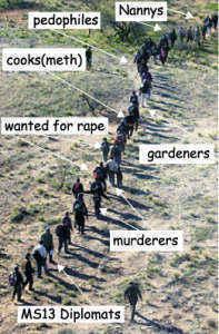 border-hoppers-with-job-desciot41